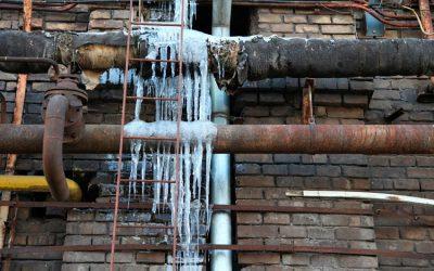 Cold Weather CAN Lead to Mold Growth